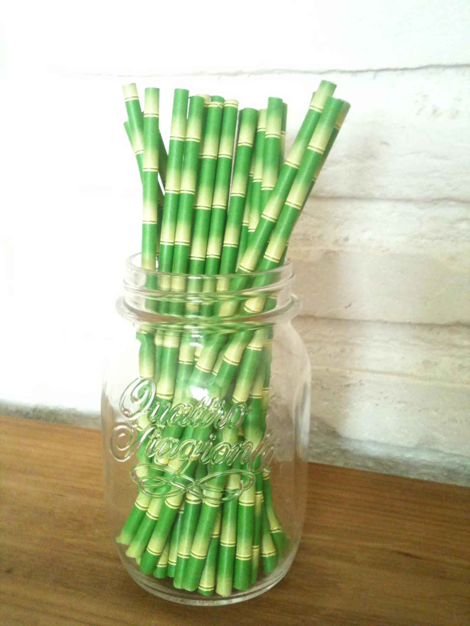 Oui Oui-pajitas papel-bambu