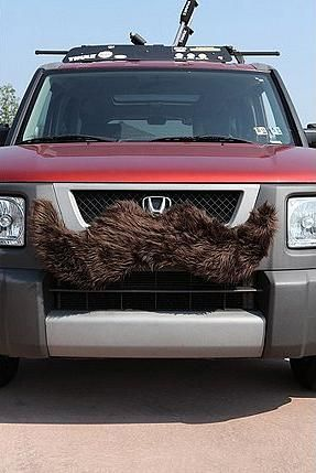 Oui Oui-movember-tipos de bigote-moustache-cosas con forma de bigote-coche con moustache