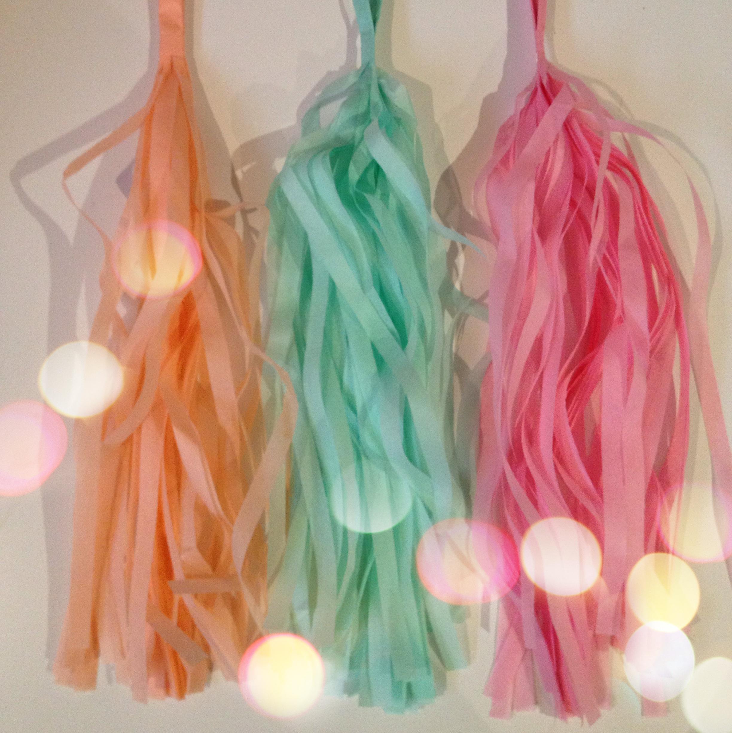 Oui Oui-guirnalda flecos-guirnalda tassel-guirnalda borlas papel-melocoton-rosa-mint con luces