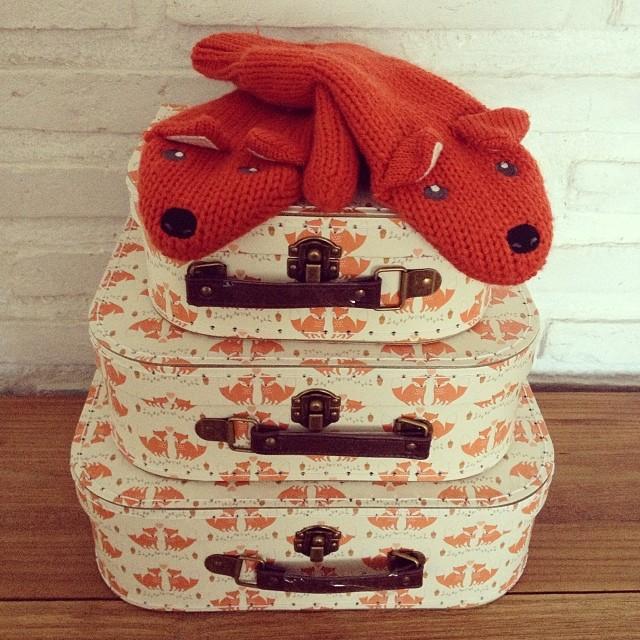 oui Oui-maletas zorros-decorar con zorros-set maletas fox naranja