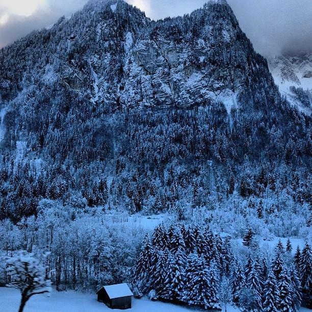 Oui Oui-boda tatiana santodomingo-andrea casiraghi-gstaad-boda invernal-boda invierno (9)