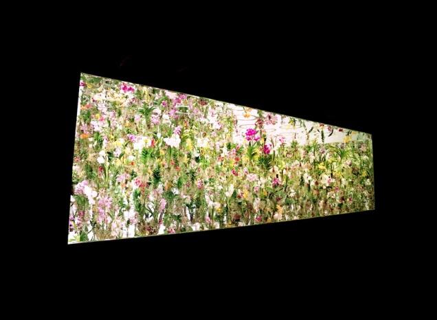 Oui Oui-jardin de flores flotante-tokio (2)