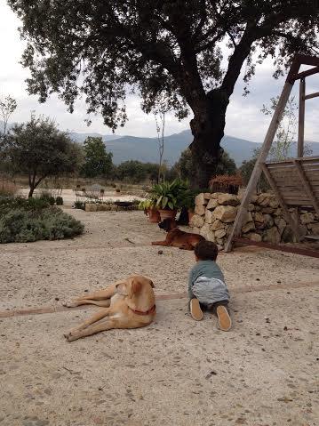 Oui Oui-hoteles con encanto con niños madrid-candeleda-la casa de los tomillares (3)